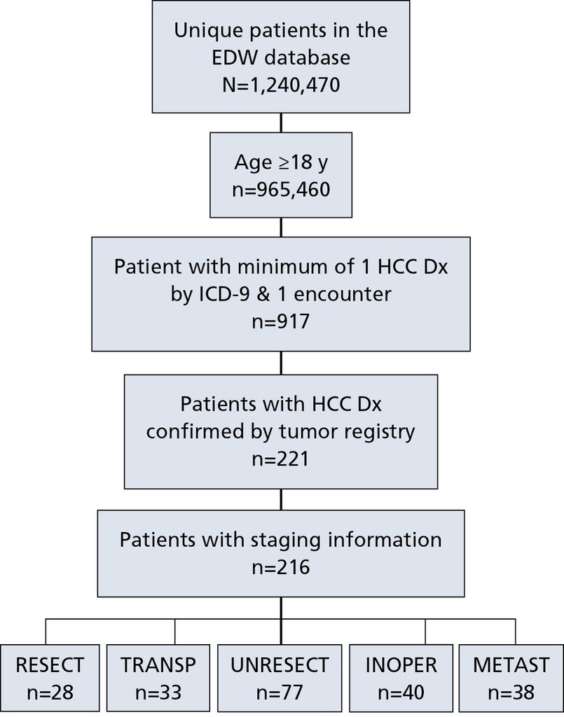 Treatment Patterns and Outcomes in Patients With Hepatocellular