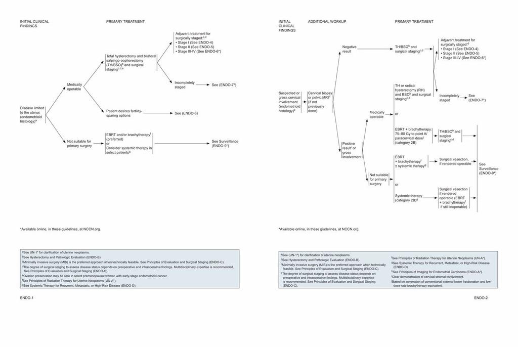 Endometrium rák nccn irányelvek - beton-emesztogodor.hu