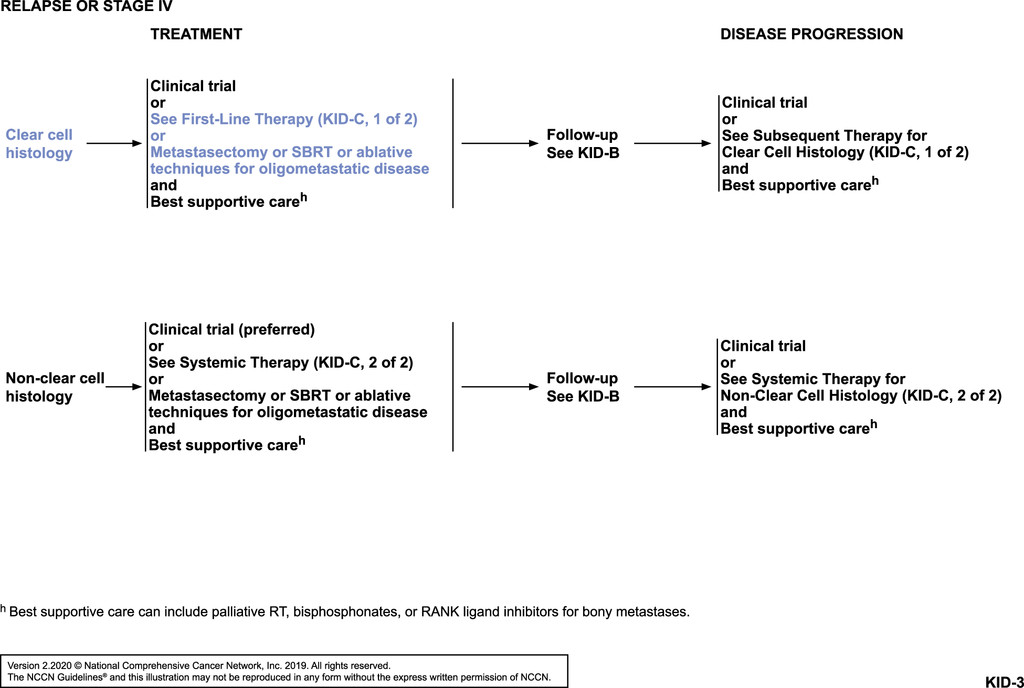 Nccn Guidelines Insights Kidney Cancer Version 2 2020 In Journal Of The National Comprehensive Cancer Network Volume 17 Issue 11 2019