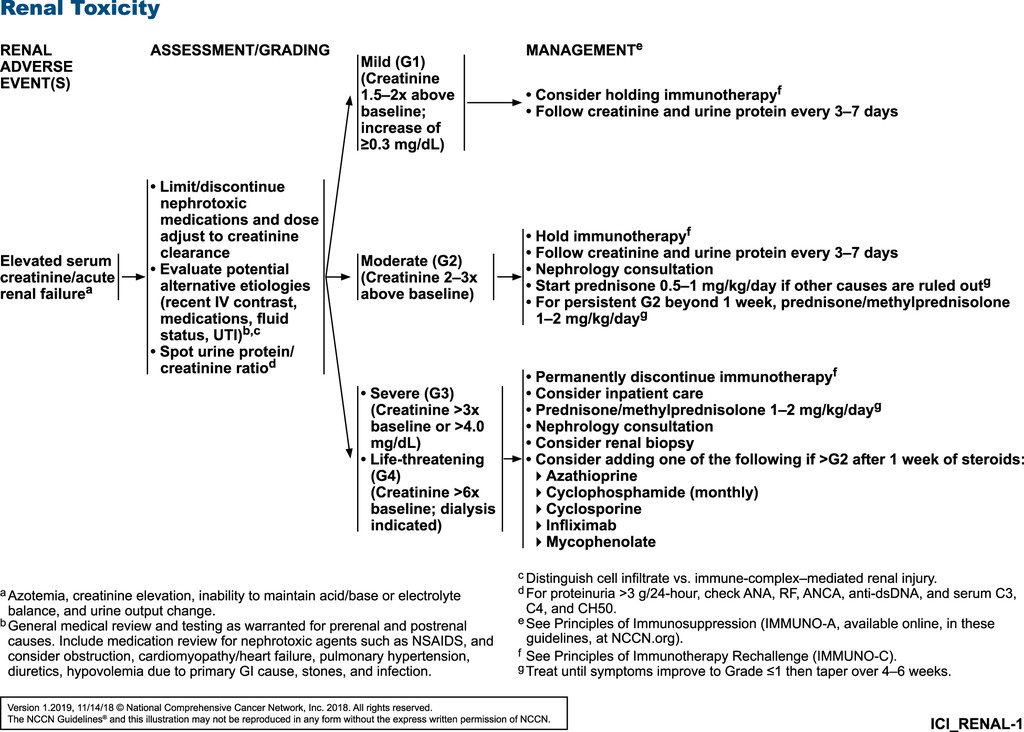 Management of Immunotherapy-Related Toxicities, Version 1 2019, NCCN