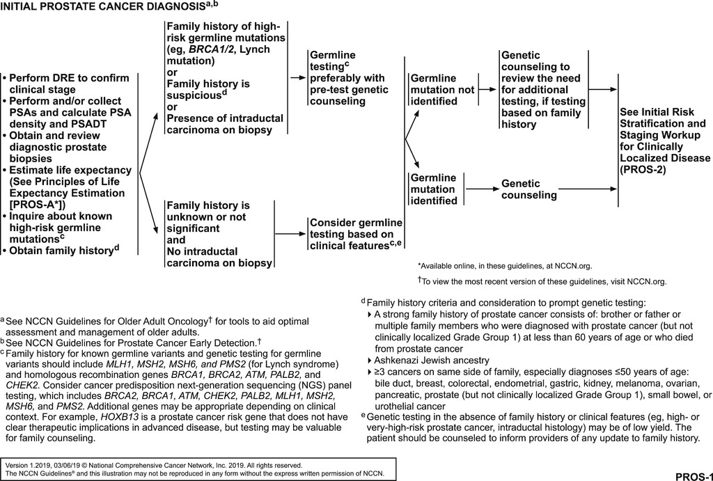 Prostate Cancer, Version 2 2019, NCCN Clinical Practice